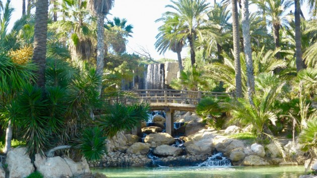 Palmenpark Alicante